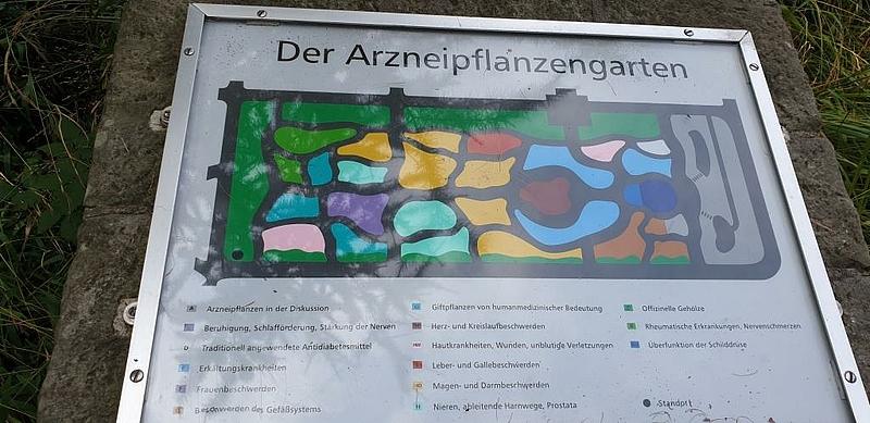 Exkursion in den Botanischen Garten